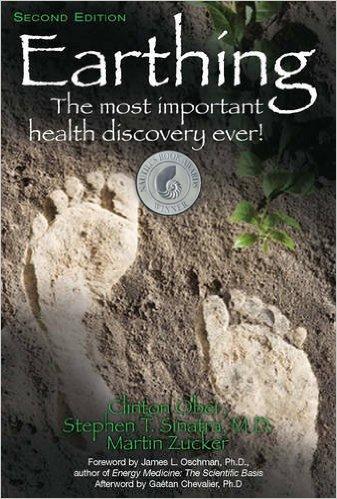 Book Earthing https://theindigoadults.com
