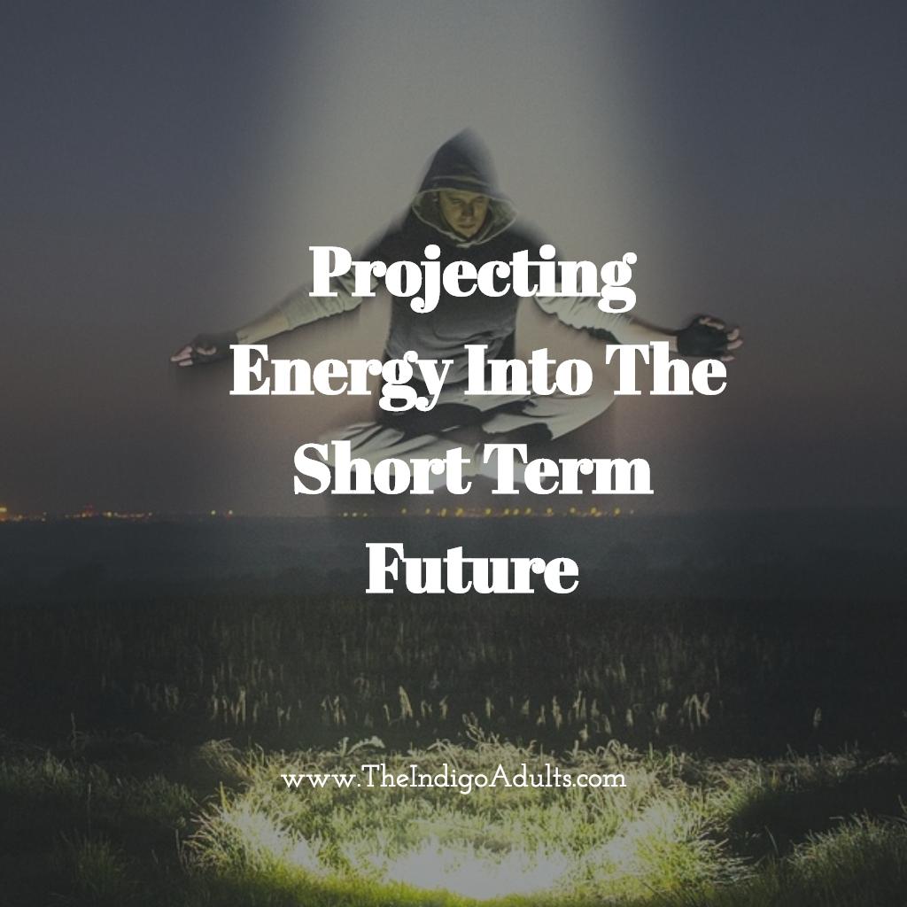 Projecting future energy Indigo adults