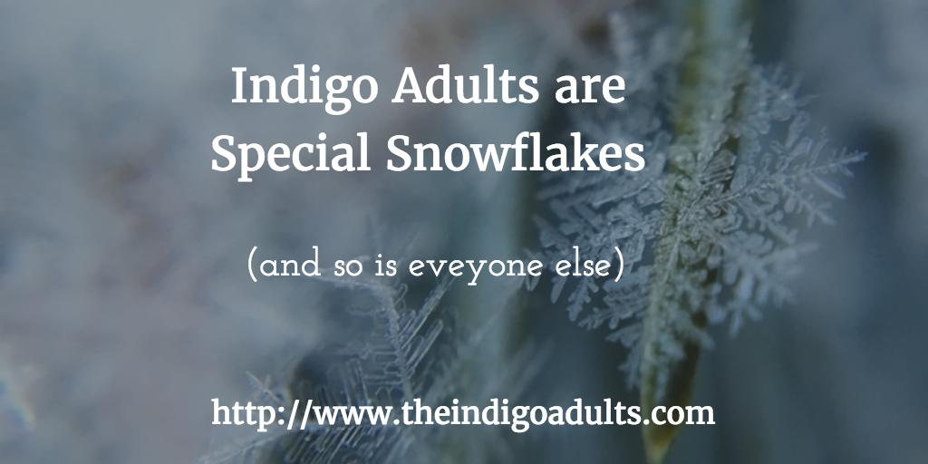 indigo adults special snowflakes