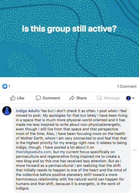 Indigo Adults Facebook Group Active
